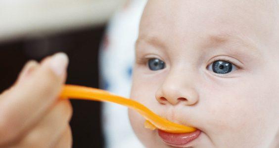 výživa dojčiat